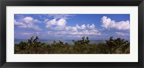 Framed Tampa Bay, Gulf Of Mexico, Anna Maria Island, Florida Print