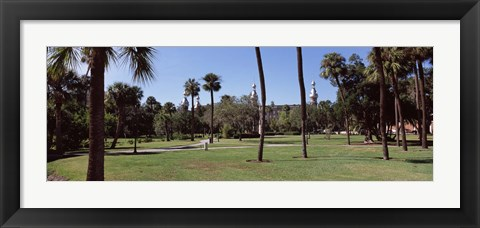 Framed Trees in a campus, University Of Tampa, Florida Print