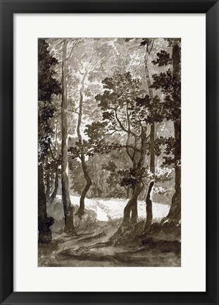 Framed Path Leading into a Forest Clearing Print