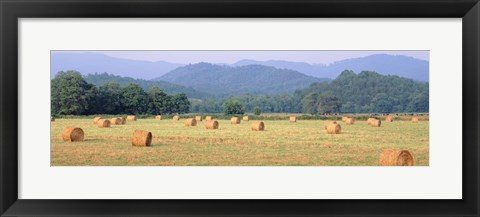 Framed Hay bales in a field, Murphy, North Carolina, USA Print