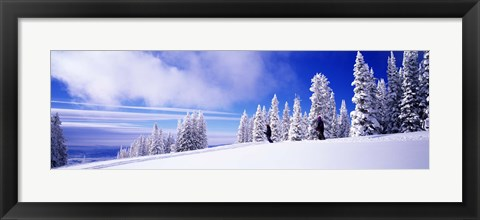 Framed Steamboat Springs, Colorado, USA Print