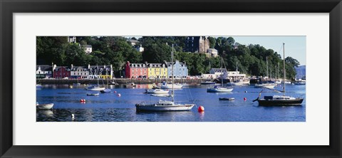 Framed Boats docked at a harbor, Tobermory, Isle of Mull, Scotland Print
