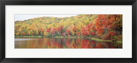 Framed Savoy Mountain State Forest, Massachusetts, USA Print