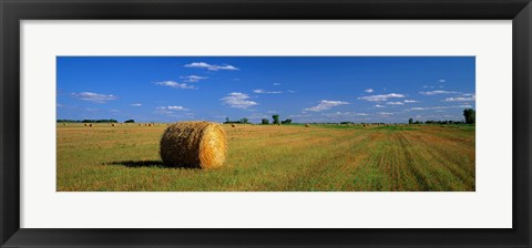 Framed Hay Bales, South Dakota, USA Print