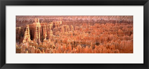 Framed Aerial View Of The Grand Canyon, Bryce Canyon National Park, Utah, USA Print