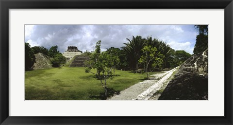 Framed Old ruins of a temple in a forest, Xunantunich, Belize Print