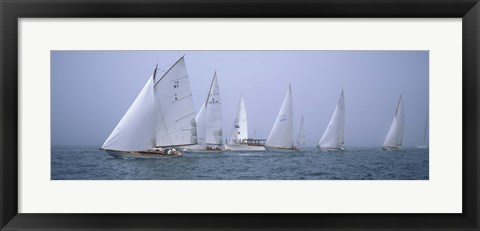 Framed Yachts racing in the ocean, Annual Museum Of Yachting Classic Yacht Regatta, Newport, Newport County, Rhode Island, USA Print
