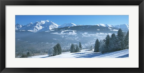 Framed Trees with snow covered mountains in winter, Combloux, Mont Blanc Massif, Haute-Savoie, Rhone-Alpes, France Print