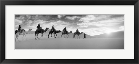 Framed Tourists riding camels through the Sahara Desert landscape led by a Berber man, Morocco (black and white) Print