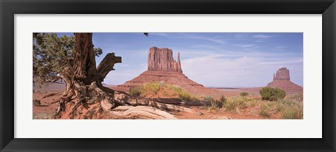 Framed Close-Up Of A Gnarled Tree With West And East Mitten, Monument Valley, Arizona, USA, Print