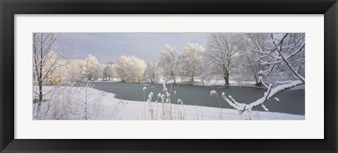 Framed Lake Schubelweiher Kusnacht Switzerland Print