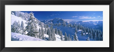 Framed Alpine Scene, Bavaria, Germany Print