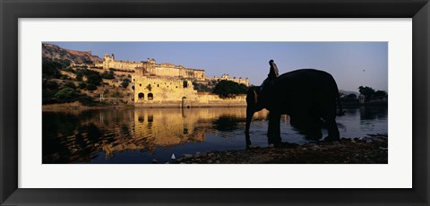 Framed Side profile of a man sitting on an elephant, Amber Fort, Jaipur, Rajasthan, India Print