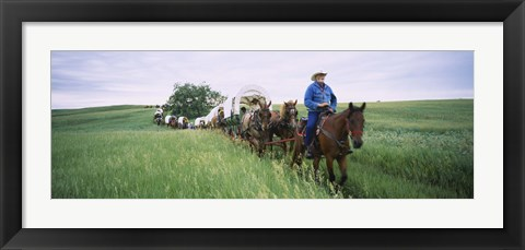 Framed Historical reenactment of covered wagons in a field, North Dakota, USA Print