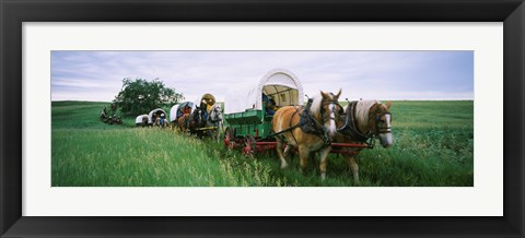 Framed Historical reenactment, Covered wagons in a field, North Dakota, USA Print