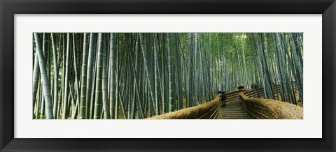 Framed Stepped walkway passing through a bamboo forest, Arashiyama, Kyoto Prefecture, Kinki Region, Honshu, Japan Print