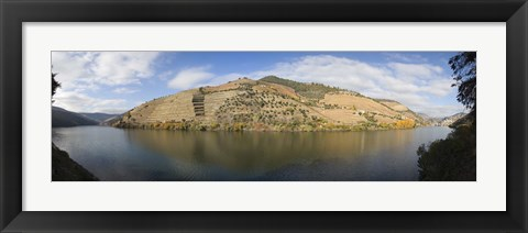 Framed Vineyards at the riverside, Cima Corgo, Duoro River, Douro Valley, Portugal Print