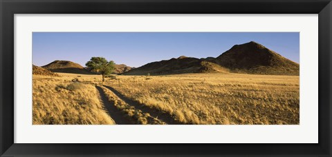 Framed Trails passing through a desert, Namibia Print