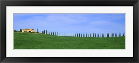Framed Farmhouse in a field, San Quirico d'Orcia, Orcia Valley, Siena Province, Tuscany, Italy Print