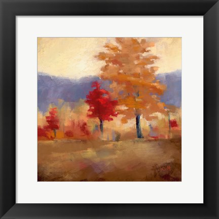 Framed Fall Splendor II Print