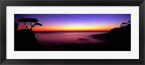 Framed Silhouette of Lone Cypress Tree on a cliff, 17-Mile Drive, Pebble Beach, Carmel, Monterey County, California, USA Print