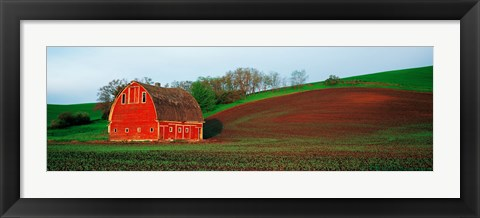 Framed Red Barn in a Field at Sunset, Washington State, USA Print