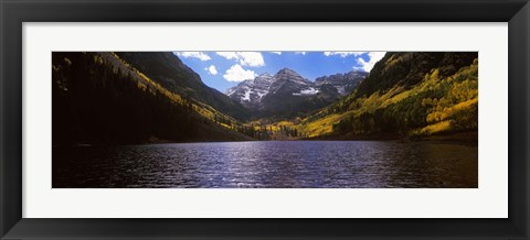Framed Trees in a forest, Snowmass Wilderness Area, Maroon Bells, Colorado, USA Print