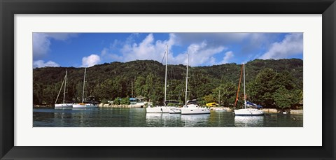 Framed Yachts anchored at the harbor on La Digue Island, Seychelles Print