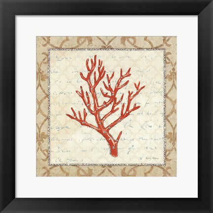 Framed Coral Beauty Light II Print