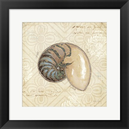 Framed Beach Treasures III Print