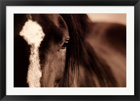 Framed Dark Eyes Print