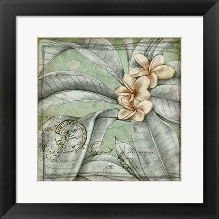 Framed Postmark Tropicals I Print