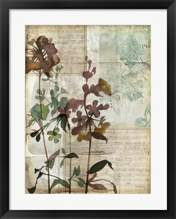 Framed Music Box Floral I Print