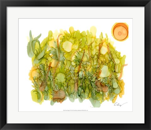 Framed Sunlit Poppies IV Print