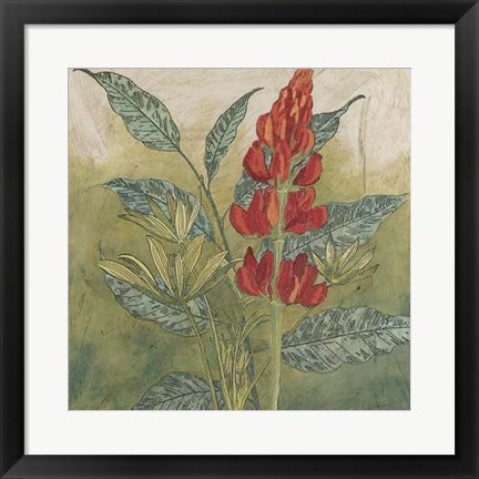 Framed Crimson Tropical II Print