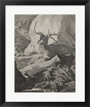 Framed Woodland Deer VIII Print