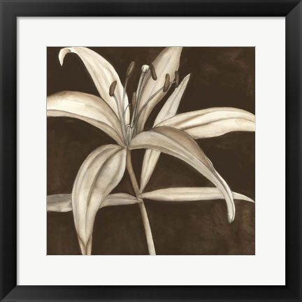 Framed Sepia Lily II Print
