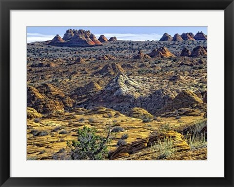 Framed View from Coyote Buttes Print