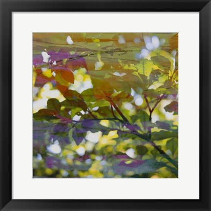 Framed Abstract Leaf Study II Print