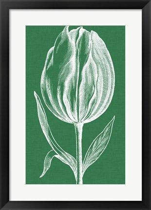 Framed Chromatic Tulips II Print