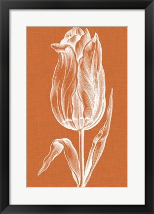 Framed Chromatic Tulips III Print