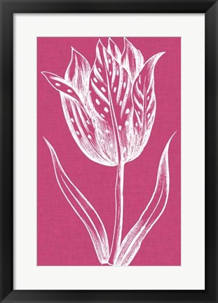 Framed Chromatic Tulips V Print