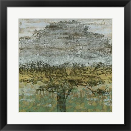 Framed Arbor Shadow II Print