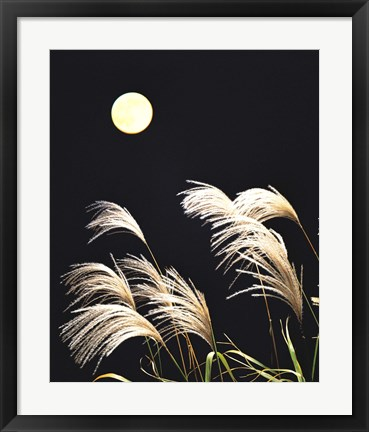 Framed Close Up View of Foxtail Grass with Full Moon in Background Print