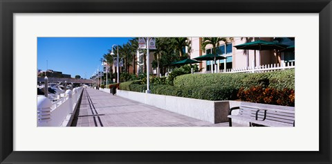 Framed Buildings along a walkway, Garrison Channel, Tampa, Florida, USA Print