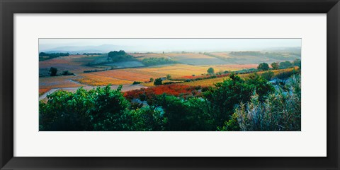 Framed Autumn Colors, Provence-Alpes-Cote d'Azur, France Print