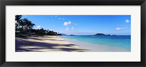 Framed Palm trees on the beach, Lanikai Beach, Oahu, Hawaii, USA Print