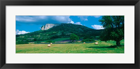 Framed Tree in a field, Mevouillon, Provence-Alpes-Cote d'Azur, France Print