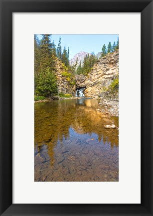 Framed Flowing stream in a forest, Banff National Park, Alberta, Canada Print