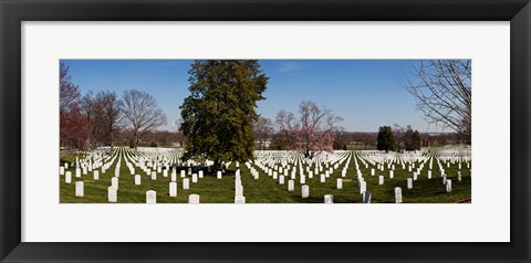 Framed Headstones in a cemetery, Arlington National Cemetery, Arlington, Virginia, USA Print